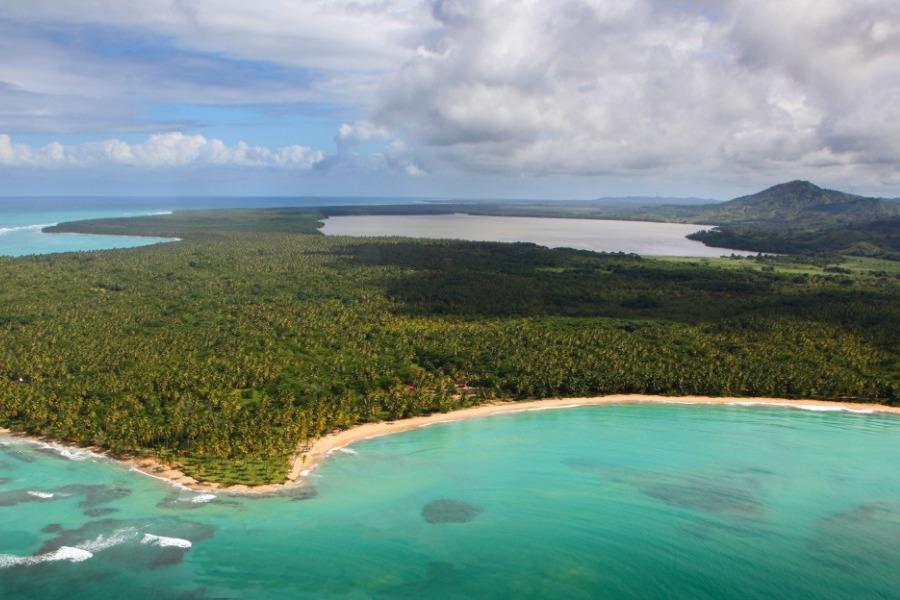 fs-tropicalia-b724e1.jpg